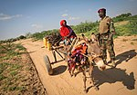 AMISOM Djiboutian Contingent in Belet Weyne 11 (8212396061).jpg