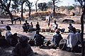 ASC Leiden - W.E.A. van Beek Collection - Dogon markets 25 - People from a neighbouring village sell vegetables at the market. Donkeys. Tireli, Mali 1983.jpg