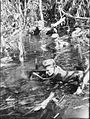 AWM 078546 Australian 42nd Battalion patrol on Bougainville.jpg
