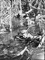 AWM 078546 Australian 42nd Battalion patrol on Bougainville.jpg