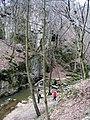 A Cuha patak völgye - panoramio.jpg
