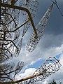 Abandoned Soviet Over-the-Horizon Radar Array - Chernobyl Exclusion Zone - Northern Ukraine - 10 (26825617190).jpg
