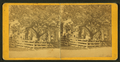 Adults and children posing behind the fences of their home, from Robert N. Dennis collection of stereoscopic views.png