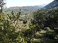 Akoli valey - panoramio.jpg