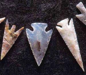 Antelope Creek Phase - Arrowheads made from Alibates flint