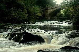 River Almond, Lothian - The River Almond and Naismith Bridge in Almondell and Calderwood Country Park