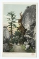 Along a Path, Lake Mohonk, N. Y (NYPL b12647398-68484).tiff
