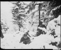 American infantrymen of the 290th Regiment fight in fresh snowfall near Amonines, Belgium. - NARA - 531239.tif