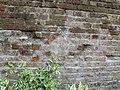 Amiens niche de mitoyenneté comblée 1.jpg