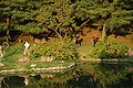 Anapji Pond-Gyeongju-Korea-2006-05.jpg