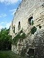 Ancien château de Montrichard - Murailles.jpg