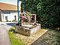 Ancien puits. Vaudémont.jpg