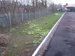 Andover railway station - A disused platform at the east end of the station.