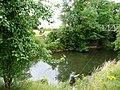 Angler on the Teme - geograph.org.uk - 2556935.jpg