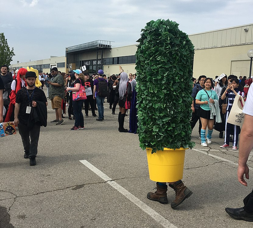 Anime North 2019 C IMG 0404.jpg