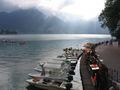 Annecy lake boats.jpeg
