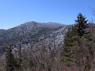 Mount Guyot (Great Smoky Mountains)