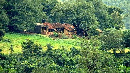 Araku Valley,Visakhapatnam