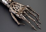 Artificial left arm, 19th century (Science Museum, London) - 3.jpg