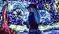 Artrageous Starry Night.jpg