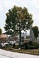 Assenede Bassevelde Dorp zonder nummer Herdenkingsbomen - 123313 - onroerenderfgoed.jpg