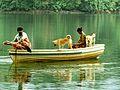 Athirappilly Mukkumpuzha Colony.jpg