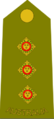 Australian-Army-CAPT-Shoulder.png