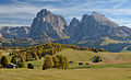 Autumn on the meadows of Seiser Alm with Saslong.jpg