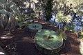 Avon NSW 2574, Australia - panoramio (9).jpg