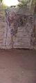 BELUM CAVES-Dr. Murali Mohan Gurram (168).jpg