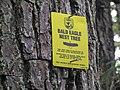 Bald Eagle Nest Tree Sign 2.jpg