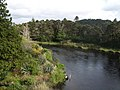 Ballynahinch River - geograph.org.uk - 1288090.jpg