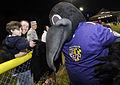 Baltimore Ravens mascot Poe Nov 2014.jpg