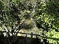 Banat,Nera Canyon - panoramio (69).jpg