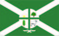 Bandeira Oficial da Cidade de Dom Eliseu-PA (png).jpg