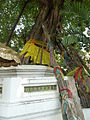 Bangkok Wat Pho P1100685.JPG