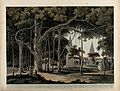 Banyan tree with Hindu temples at Agori, Bihar. Coloured aqu Wellcome V0050478.jpg