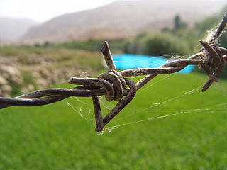 Barbed wire type of steel fencing wire constructed with sharp edges or points arranged at intervals along the strand(s)