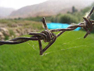 Barbed wire - A close-up view of a barbed wire
