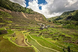 Batad Rice Terraces - different angle - Adrian Simionov.jpg
