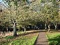 Battery gardens, Brixham - geograph.org.uk - 1574854.jpg