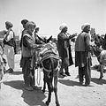 Bazar. Widoczna uprząż osła - Dawlatabad - 001205n.jpg