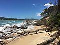 Beach at Noosa North Shore, Queensland 02.JPG