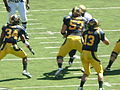 Bears on offense at Colorado at Cal 2010-09-11 14.JPG