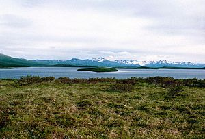 Becharof refuge lake.jpg