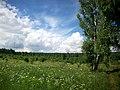 Belebeyevsky District, Republic of Bashkortostan, Russia - panoramio - Matveev Michail (11).jpg