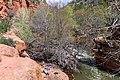 Bell Trail (38321127314).jpg