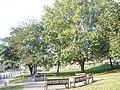 Benches on Tower Hill Green - geograph.org.uk - 1008949.jpg