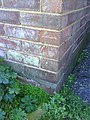 Benchmark on ^21 Whaddon Chase - geograph.org.uk - 2130793.jpg