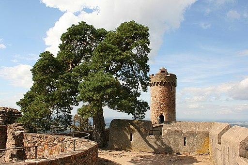 Bensheim Auerbach - Schloss 18 ies